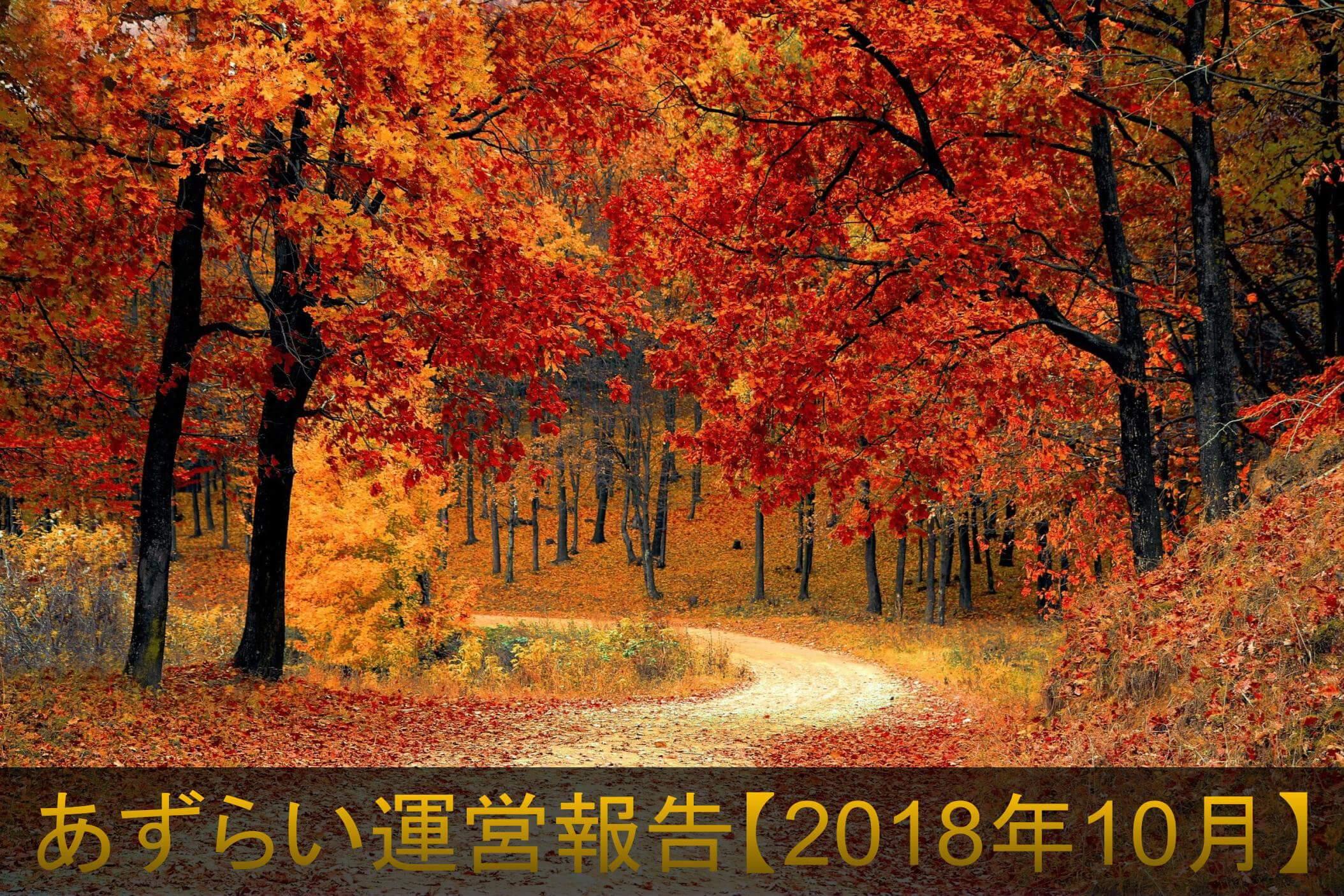 紅葉が美しい森 あずらい運営報告【2018年10月】