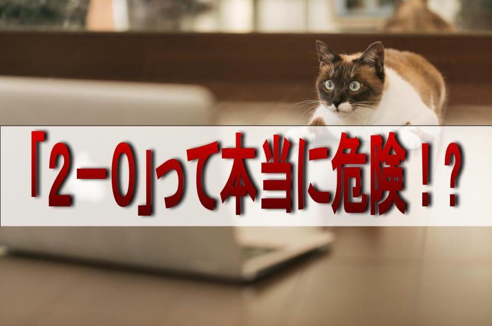 パソコン画面をガン見する猫とテキスト「2-0」って本当に危険!?