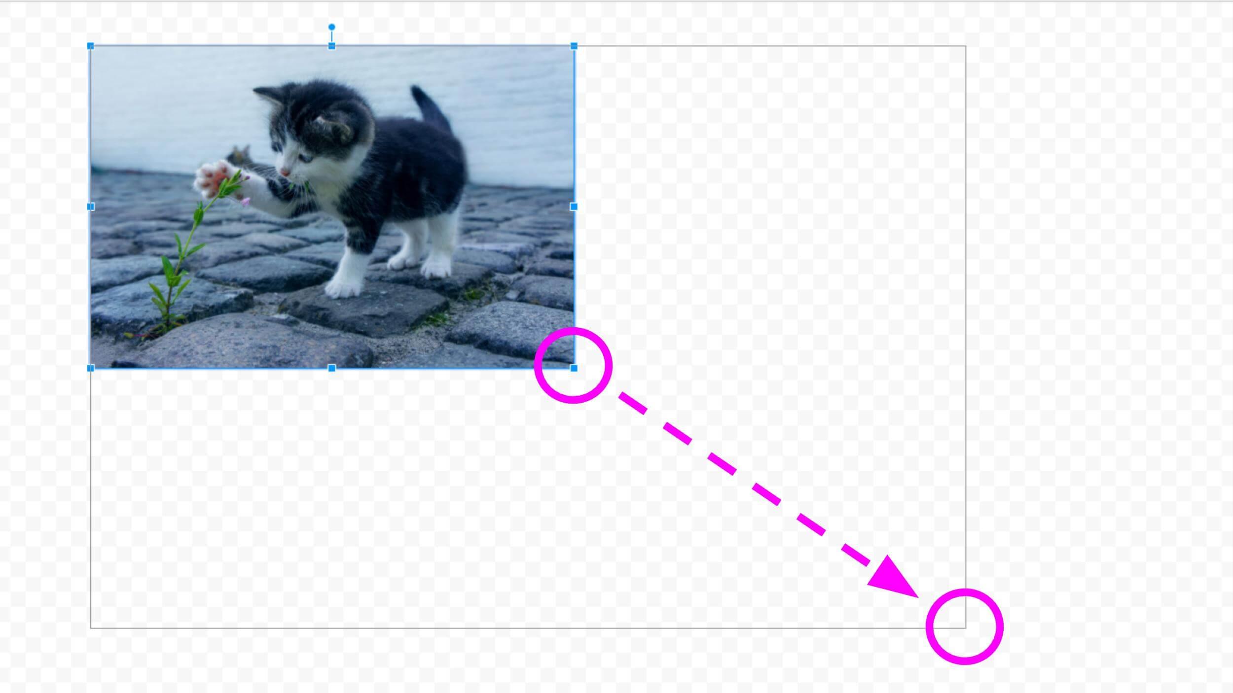 画像のサイズ変更 拡大
