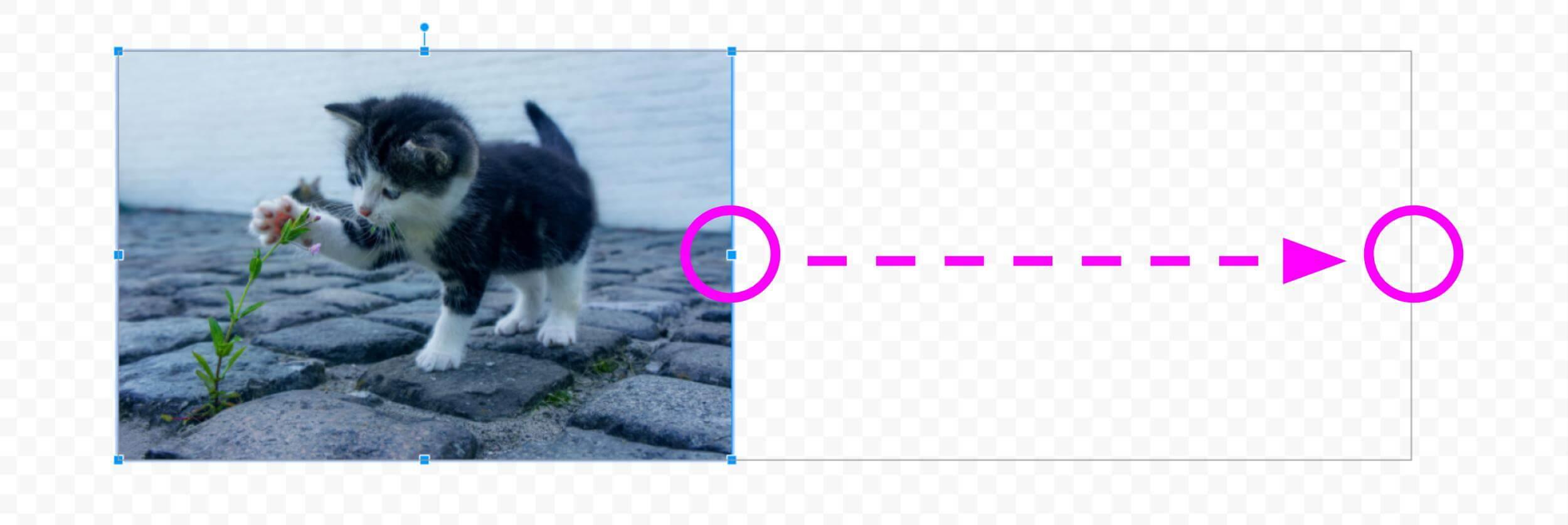 画像のサイズ変更 縦横比